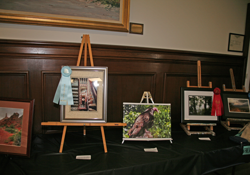 Winners of the 40th Annual Senior Art Show